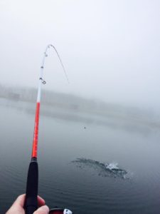 Fiskestang med flex