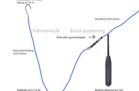 Bundfiskeri med bottom detector – Se hvordan du gør her!