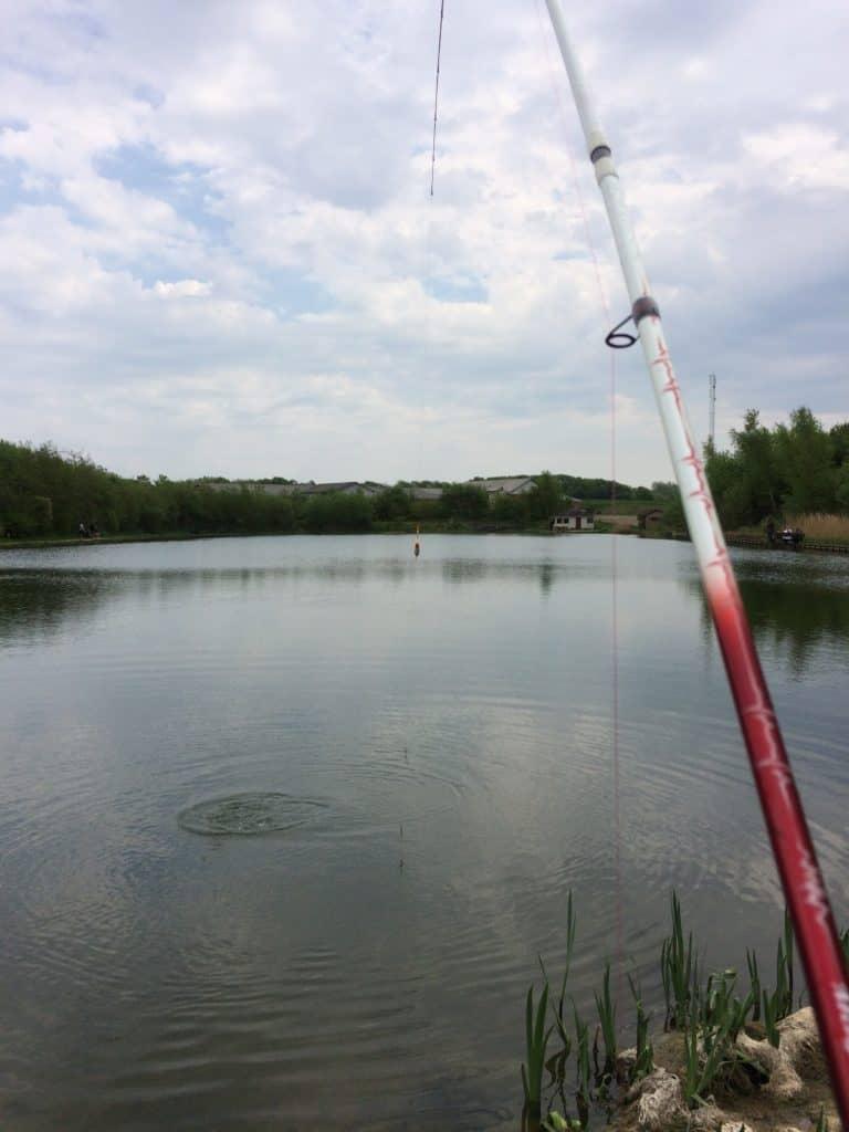 HP's fiskesø