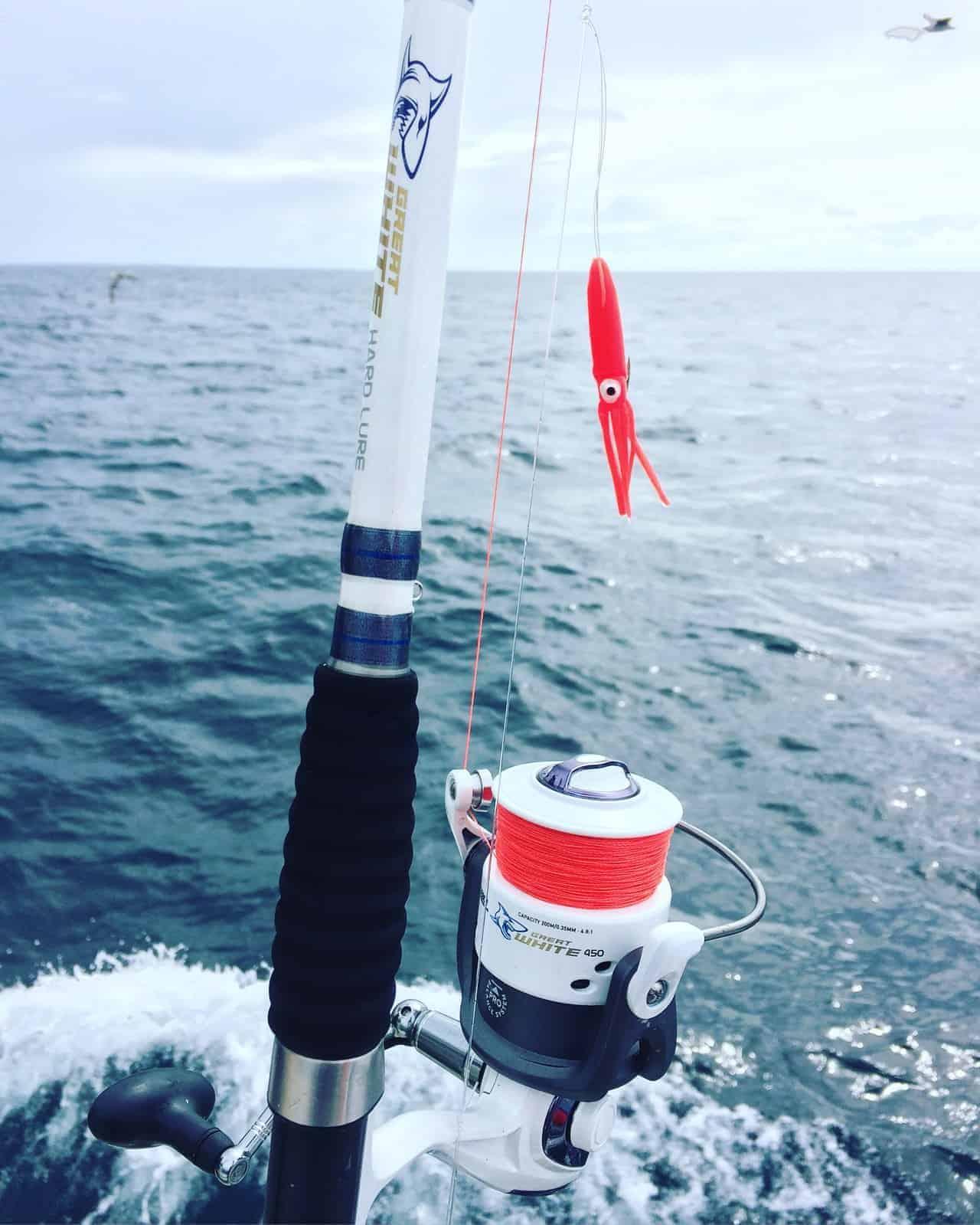 Lad pirken hænge og fang flere fisk