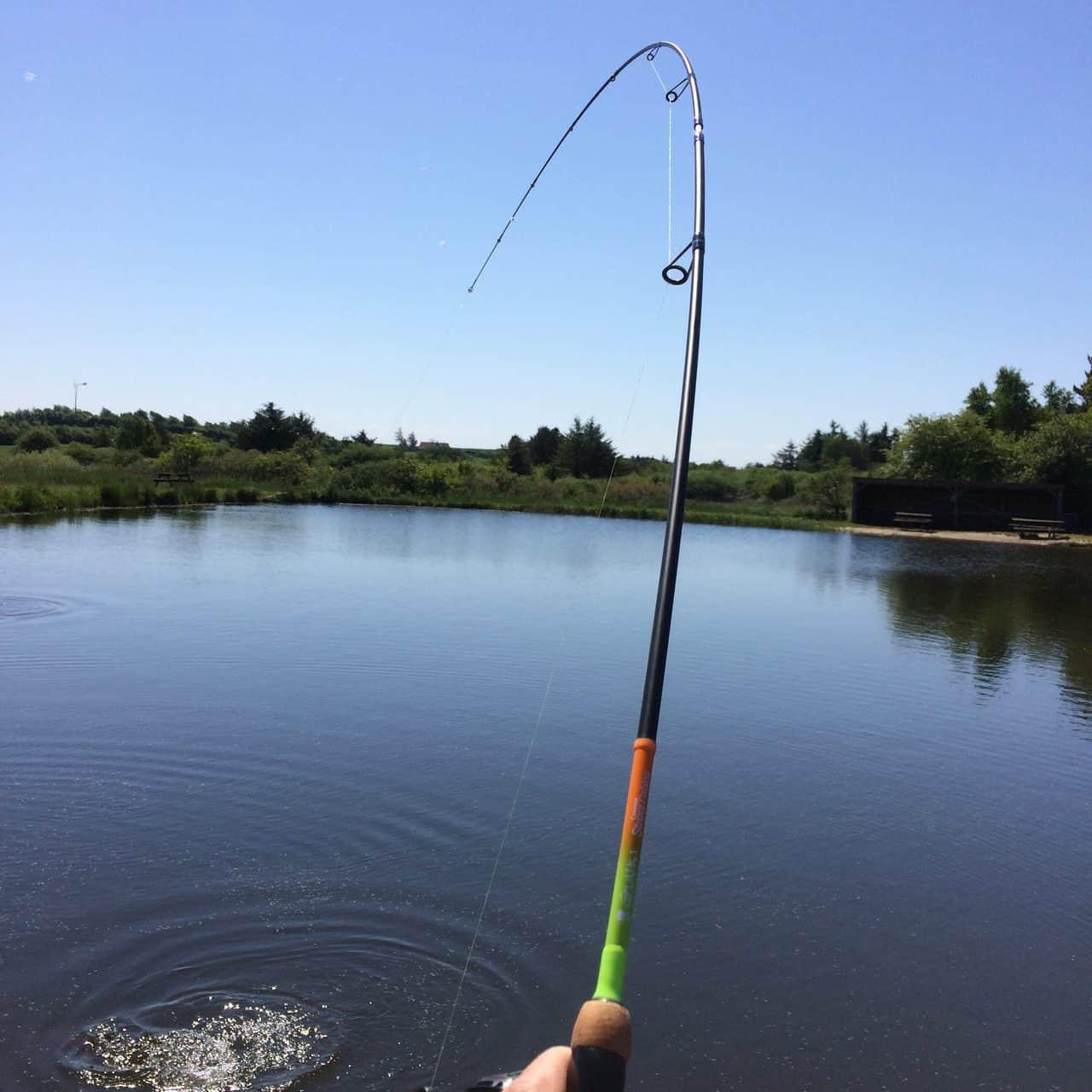 Hvad er UL fiskeri?