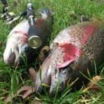 AKKOI fiskestang