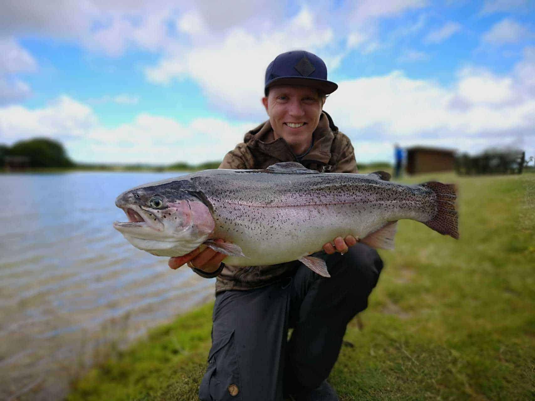 fiskeri efter regnbueørred