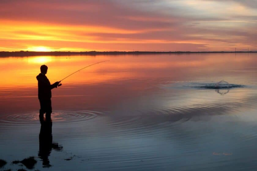 Limfjorden – 30 bedste havørredpladser på Mors og i Thy