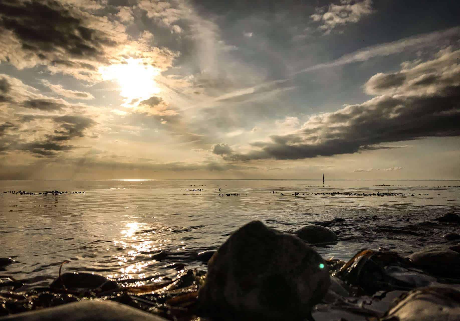 Bedste fiskepladser efter havørred i mariagerfjord
