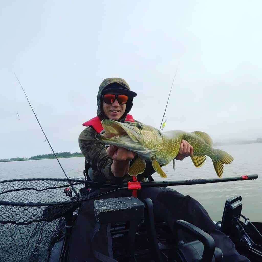 Geddefiskeri i danmark