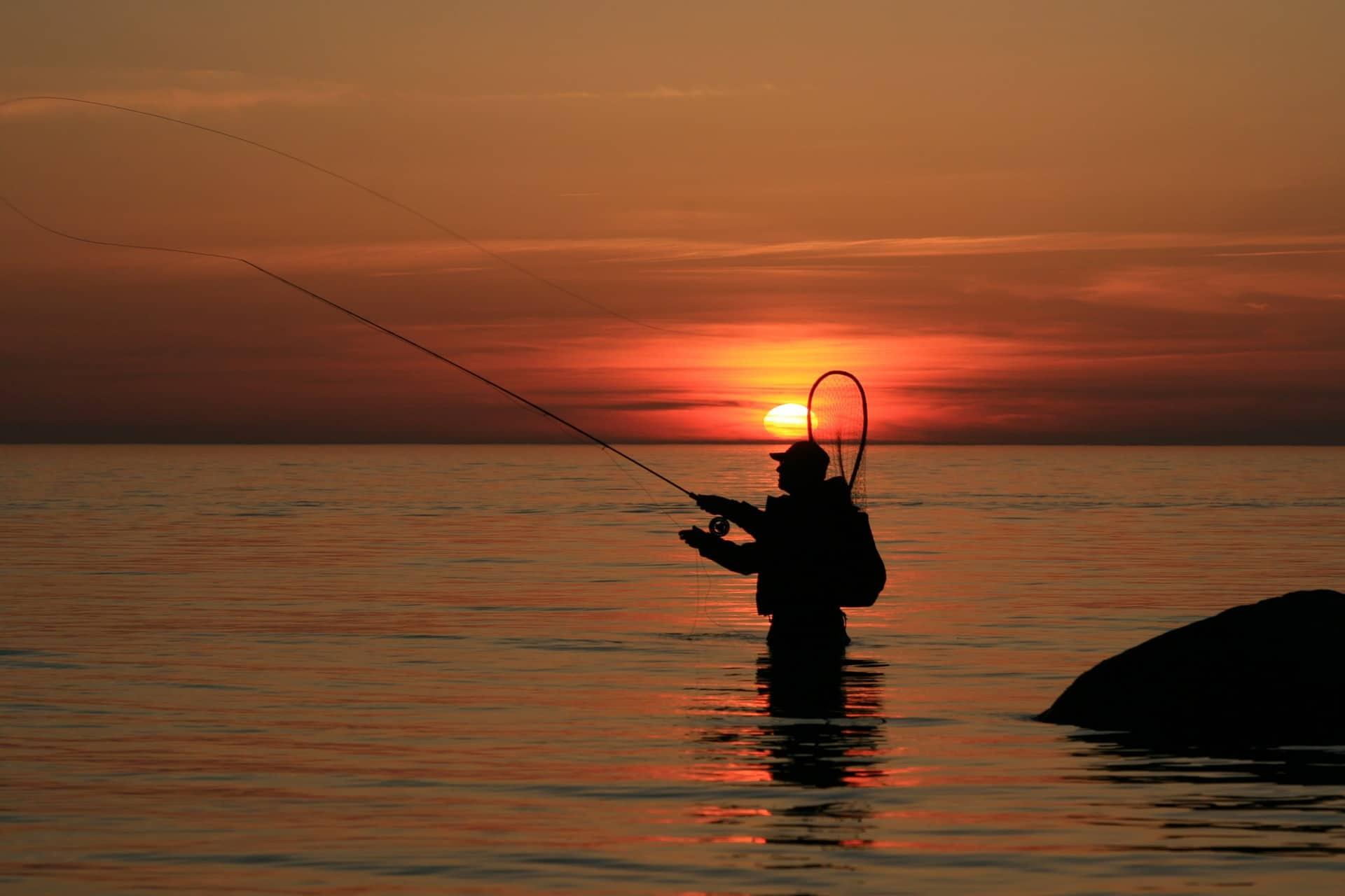 Bedste fiskepladser i Isefjord efter havørred