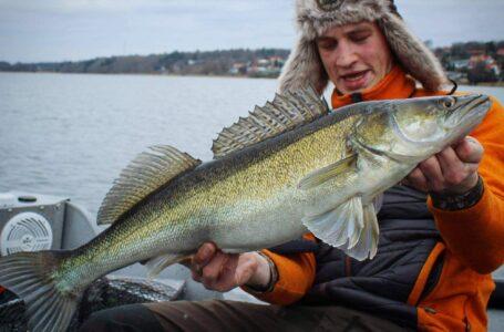 Fiskeri efter sandart – Hvordan og hvor?