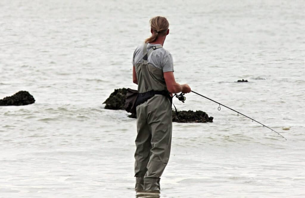 Lystfiskeri limfjorden 2020 - Fiskeri efter havørred