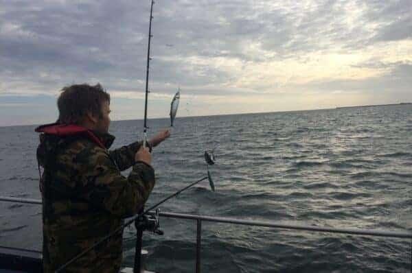 lystfiskeri i Thy Makrelfiskeri vestkysten