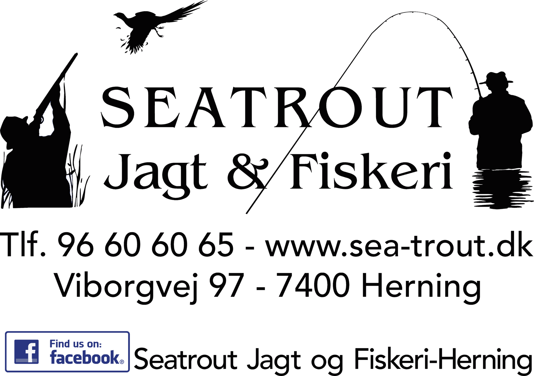 Seatrout Herning
