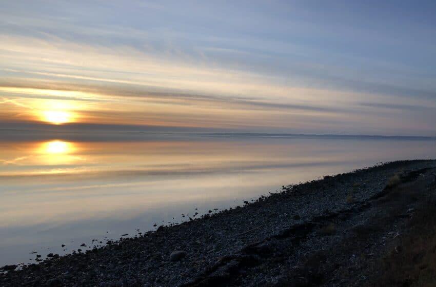 Fiskepladser i Limfjorden – Havørred