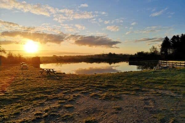 Nørhå fiskepark - Put and take nordjylland