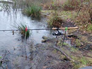 Deadbait til geddefiskeri med død agn se rig