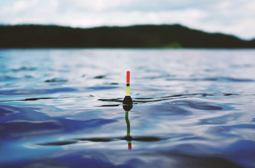 Geddefiskeri med død agn under prop