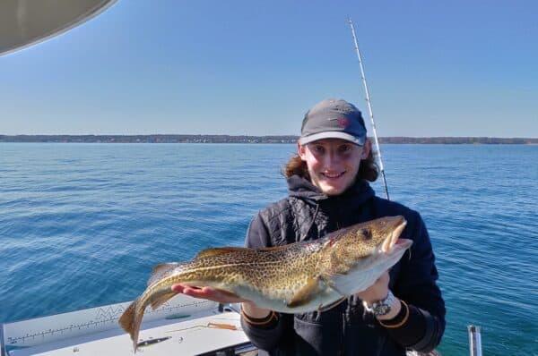 fiskeri efter torsk fra båd