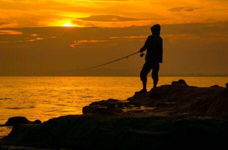 Makrelfiskeri fra vestkysten - Kystfiskeri efter makrell