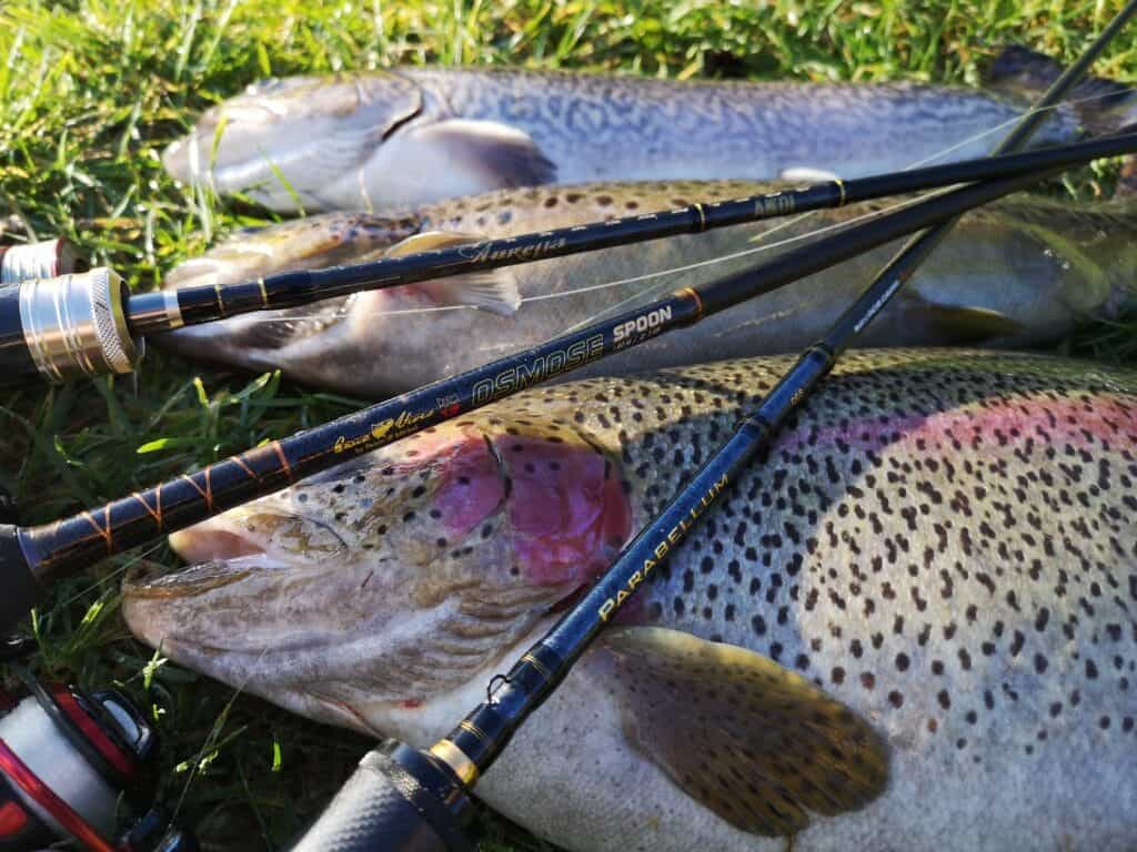 put and take fiskestang