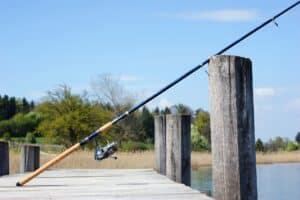 fiskestang , bedste fiskestang. hvilken fiskestang skal jeg bruge?