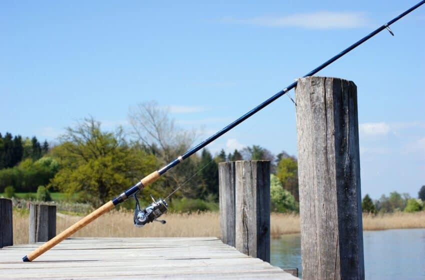 Vælg den rigtige fiskestang