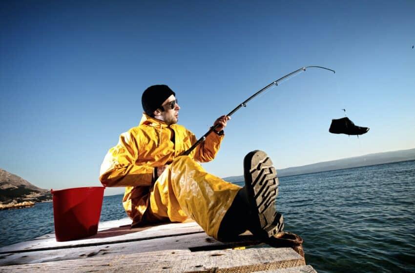 Fiskekalender over fiskesæson i Danmark