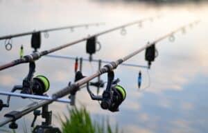 Fiskestænger og fiskehjul til karpe fiskeri