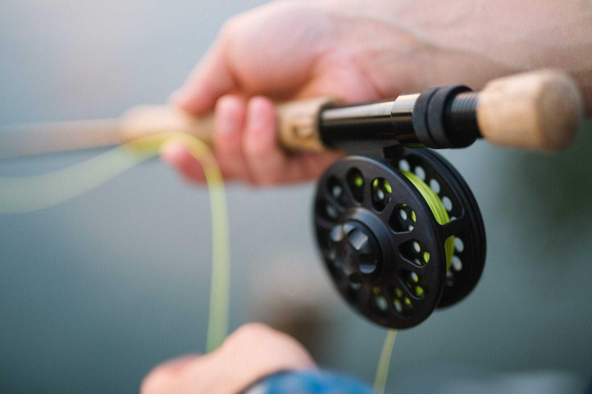 Begynderguide til fluefiskeri
