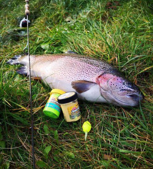 fiskeri med powerbait 2020