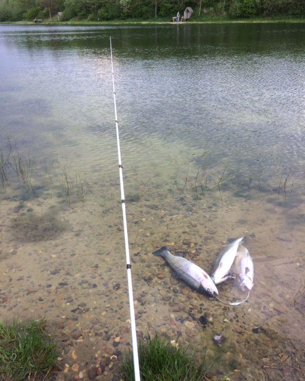 put and take fiskeri